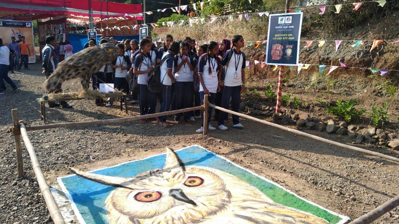 Owl Rangoli